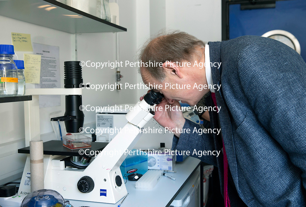 Muscular Dystrophy UK visit to the Biomedical Sciences Research Complex, St Andrews University…<br />Robert Meadowbank Chief Executive Muscular Dystrophy UK views live cells on a microscope<br />Picture by Graeme Hart.<br />Copyright Perthshire Picture Agency<br />Tel: 01738 623350  Mobile: 07990 594431