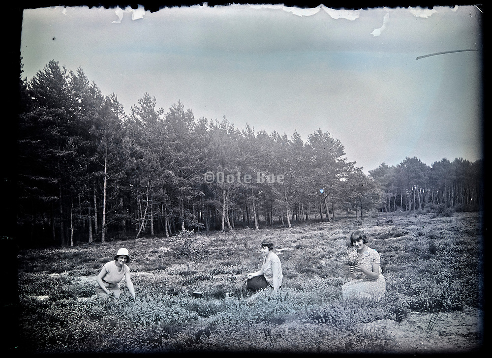 woman sitting in an open field in the woods France circa 1920s