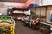 Workers sleeping at Shanghais old flower market off Rejin Lu, in Shanghai, China. This excellent flower market which sells fresh flowers on the ground floor and fake flowers upstairs is situated in an old communist party building. Sellers and arrangers work through the heat and cold in this exposed building, moving flowers at unbelievably low prices compared to this trade in the West.