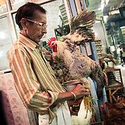 meat market at INA market New Delhi
