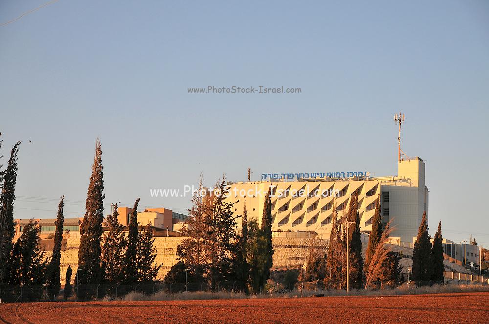 The Baruch Padeh Medical Center, Poriya, (Near Tiberias) Northern Israel