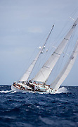 Storm Vogel sailing in the Cannon Race at the Antigua Classic Yacht Regatta.