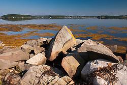 Rocky Shoreline Overlooking Castine, Sheep Island, Castine, Maine, US
