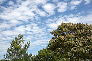 Broken altocumulus clouds in blue mackerel sky above Swansea, West Glamorgan, Wales, UK