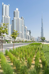 Modern landscaping in park adjacent apartment towers at Bay Avenue development in Business Bay Dubai United Arab Emirates