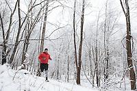 snow run
