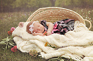 Newborn Photography_2