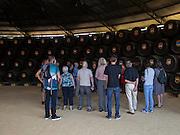 Tourists on guided tour Gonzalez Byass bodega, Jerez de la Frontera, Spain