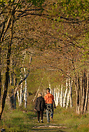 Town of Mamakating, N.Y. - A man and a woman walk down a path while birdwatching in the Bashakill Wildlife Management Area on May 4, 2006.