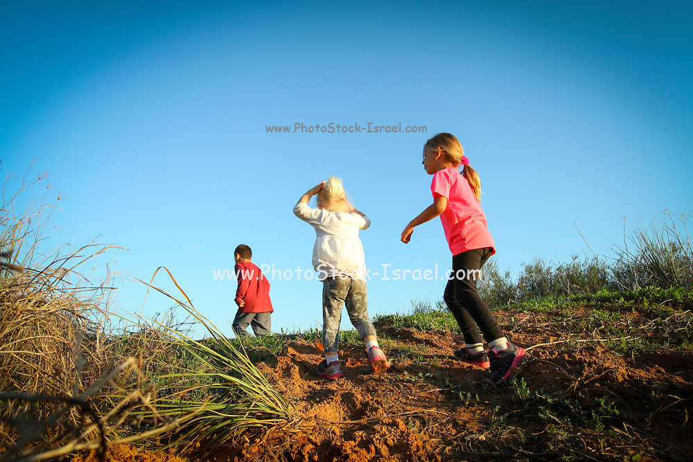 Outdoor activity. A group of children exploring outside