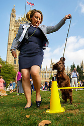 © Licensed to London News Pictures. 08/09/2016. London, UK. MP for ANNE-MARIE TREVELYAN performs with her Cocker-Spaniel dog 'Trouble' whilst taking part in Westminster Dog of the Year competition in Victoria Tower Gardens, London on Thursday, 8 September 2016. Photo credit: Tolga Akmen/LNP