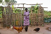 Margaret Nakazi has built a chicken house after training from Kulika. She still has to thatch and mud the walls. She farms in the Nakasongolo district of Uganda.