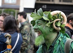 © Licensed to London News Pictures. 01/05/2014. Greeenwich, London. Deptford Jack in the green. The Jack in the Green tradition developed from the 17th Century custom of milkmaids going out on May Day with the utensils of their trade - silver cups, pots, spoons - decorated with garlands and piled into a pyramid which they carried on their heads. By the mid eighteenth century other groups, notably chimney sweeps, were moving in on the milkmaids' territory as they saw May Day as a good opportunity to collect money.. Photo credit : Mike King/LNP