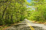 Country Road, Southold, NY