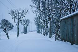 THEMENBILD - leerer Gehweg gesäumt von Bäumen bei Neuschnee, aufgenommen am 03. Dezember 2020, Kaprun, Österreich // empty pavement lined with trees in fresh snow on 2020/12/03, Kaprun, Austria. EXPA Pictures © 2020, PhotoCredit: EXPA/ Stefanie Oberhauser