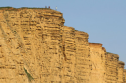 © Licensed to London News Pictures. 20/04/2019. West Bay, UK.  A group of people look over the cliff edge at West Bay Beach on Dorset, south west England. The UK could experiencing record temperatures for an Easter Bank Holiday weekend.  Photo credit: Jason Bryant/LNP