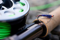 Close-up of fly fishing reel and steelhead fly taken along the Deschutes River in eastern Oregon.