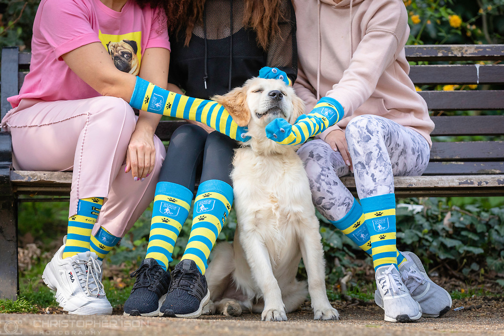 EMBARGOED, EDITORIAL FREE TO USE IMAGE.<br /> Please do not publish before 00:01 on 1st May; 2019. <br /> <br /> Guide dog puppy Storm, a five-month-old golden retriever, is cuddled by Laura Anderson, Jess Impiazzi and Pandora Christie, who are wearing Guide Dogs socks from the charity's new fundraising challenge, Walk Your Socks Off. Guide Dogs is challenging the nation to walk 100,000 steps for one week in May (the number of steps a guide dog trainer does) and raise money to support people living with sight loss. In return for this amazing effort, the charity will replace worn-out socks with an exclusive Guide Dogs pair.<br /> guidedogs.org.uk/walkyoursocksoff<br /> Photograph by Christopher Ison for Guide Dogs ©