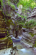 "Slot canyon stream near Mikro Papingo village (or small Papigo, Greek: ), Zagoria, north Pindus Mountains (Pindos or Pindhos), Epirus/Epiros, Greece, Europe. Zagori (Greek: ) is a region and a municipality in the Pindus mountains in Epirus, in northwestern Greece. Zagori contains 45 villages collectively known as Zagoria (Zagorochoria or Zagorohoria). Published in ""Pindos: The National Park"" (2010) by Alexander G. Tziolas, preface by Tom Dempsey et al, ISBN 978-960-98795-3-8."