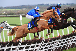 Advantage Point and Robert Colgan jump the last to win the Cavan Developments Maiden Hurdle during BBA Ireland Opera Hat Mares Chase Day at Naas Racecourse.