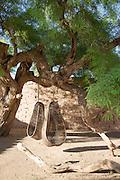 Wicker Egg Chairs Hanging in the garden at Tierra Atacama Hotel, San Pedro de Atacama, Atacama Desert, Chile, South America