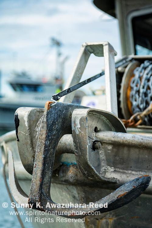 Close up of anchor of commercial fishing boat at Homer Boat Harbor, Homer Spit, Homer, Kenai Peninsula, Southcentral Alaska, Summer. Vertical image.
