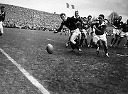 Scottish forward N S Bruce, to the left, and Irish scrum half, J T M Quirke race the ball to the sideline after a scrum,..Irish Rugby Football Union, Ireland v Scotland, Five Nations, Landsdowne Road, Dublin, Ireland, Saturday 24th February, 1962,.24.2.1962, 2.24.1962,..Referee- N M Parkes, Rugby Football Union, ..Score- Ireland 6 - 20 Scotland, ..Irish Team, ..F G Gilpin, Wearing number 15 Irish jersey, Full Back, Queens University Rugby Football Club, Belfast, Northern Ireland,..W R Hunter, Wearing number 14 Irish jersey, Right Wing, C I Y M S Rugby Football Club, Belfast, Northern Ireland, ..M K Flynn, Wearing number 13 Irish jersey, Right Centre, Wanderers Rugby Football Club, Dublin, Ireland, ..D Hewitt, Wearing number 12 Irish jersey, Left centre, Instonians Rugby Football Club, Belfast, Northern Ireland,..N H Brophy, Wearing number 11 Irish jersey, Left wing, Blackrock College Rugby Football Club, Dublin, Ireland, ..G G Hardy, Wearing  Number 10 Irish jersey, Stand Off, Bective Rangers Rugby Football Club, Dublin, Ireland,  ..J T M Quirke, Wearing number 9 Irish jersey, Scrum Centre, Blackrock College Rugby Football Club, Dublin, Ireland, ..S Millar, Wearing number 1 Irish jersey, Forward, Ballymena Rugby Football Club, Antrim, Northern Ireland,..A R Dawson, Wearing number 2 Irish jersey, Forward, Wanderers Rugby Football Club, Dublin, Ireland, ..R J McLoughlin, Wearing number 3 Irish jersey, Forward, University College Dublin Rugby Football Club, Dublin, Ireland, ..W A Mulcahy, Wearing number 4 Irish jersey, Captain of the Irish team, Forward, Bohemians Rugby Football Club, Limerick, Ireland,..W J McBride, Wearing number 5 Irish jersey, Forward, Ballymena Rugby Football Club, Antrim, Northern Ireland,..D Scott, Wearing number 6 Irish jersey, Forward, Malone Rugby Football Club, Belfast, Northern Ireland, ..M L Hipwell, Wearing number 8 Irish jersey, Forward, Terenure Rugby Football Club, Dublin, Ireland, ..M G Culliton, Wearing number 7 Irish jersey, Forward