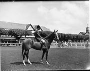 04/08/1960<br /> 08/04/1960<br /> 04 August 1960<br /> R.D.S Horse Show Dublin (Thursday).