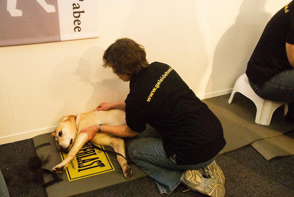 Houten, 28jan, 2010.Ziezo beurs voor visueel gehandicapten. Blinde geleiden honden krijgen een goede trimbeurt en een massage..(c)Renee Teunis.