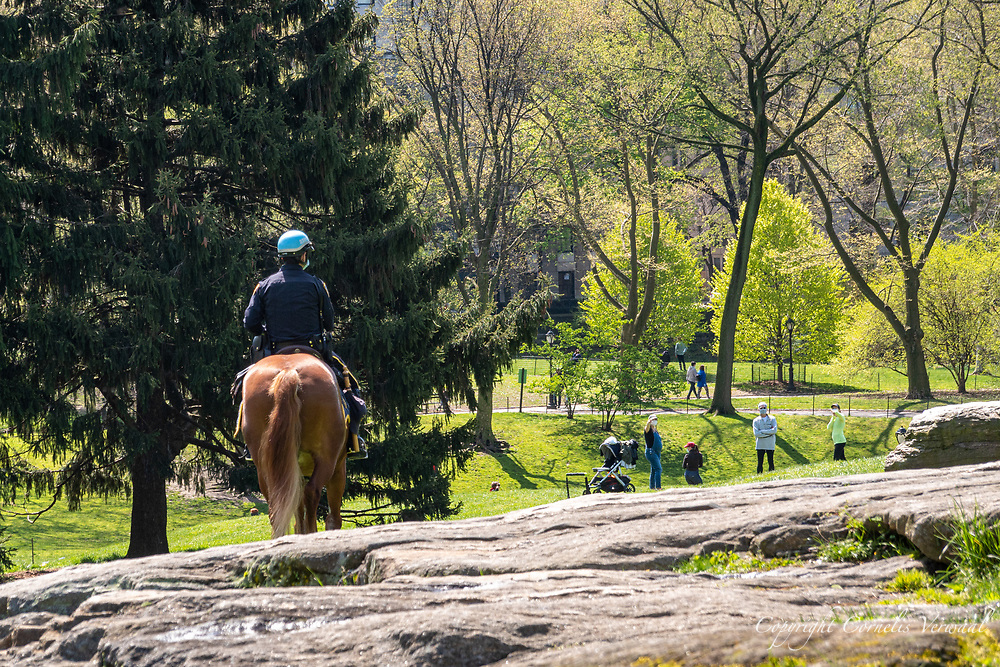 Mounted NYPD officers keep an eye on the Central Park visitors today April 25, 2020.