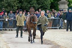 Speirs Camilla, (IRL), Portersize Just a Jiff<br /> First Horse Inspection - Mitsubishi Motors Badminton Horse Trials <br /> Badminton 2015