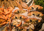 Crabs and seafood high quality food on display at Suffolk Food Hall, Wherstead, Suffolk, England
