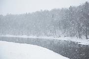Heavy snowfall and partly frozen River Gauja with a flock of ducks sitting on ice, Gauja National Park (Gaujas Nacionālais parks), Latvia Ⓒ Davis Ulands | davisulands.com