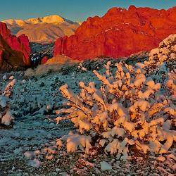 Sunrise at Garden of the Gods and Pikes Peak, Colorado Springs, Colorado, USA