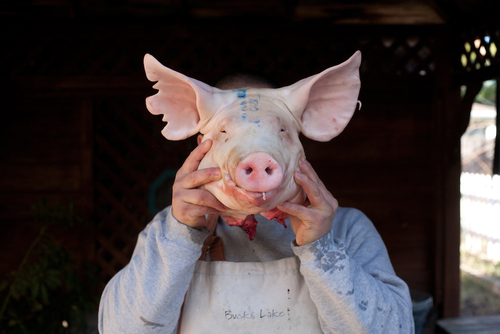 Antonia Villagomez, head chef and owner of Cilantros Restaurant in Yuba City, California, butchers a whole pig at his home in Yuba City. Antonio Villagomez, head chef and owner of Cilantros Restaurant in Yuba City, California, butchers a whole pig at his home in Yuba City.