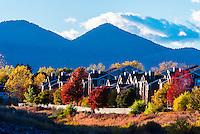 Autumn color, Littleton, Colorado USA.