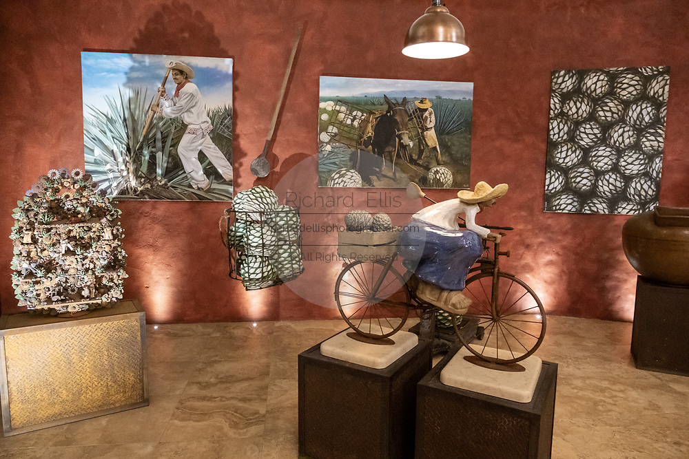 A display of local art inside the tasting room at the Casa Siete Leguas, El Centenario tequila distillery in Atotonilco de Alto, Jalisco, Mexico. The tequila is aged from 2-12 years in white oak barrels that once held American Kentucky Bourbon. The Seven Leagues tequila distillery is the oldest family owned distillery producing authentic handcrafted tequila using traditional methods.