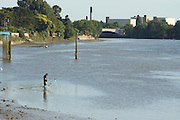 London, England. 14 September 2016. <br /> Low tide at Strand-on-the-Green with a solitary angler. <br /> ©Peter Hogan/Exclusivepix Media
