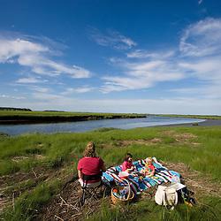 A picnic next to a tidal estuary in Plum Island Sound Massachusetts USA
