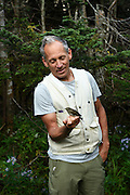 Vermont Center for Ecostudies Executive Director Chris Rimmer holds a Bicknell's Thrush after removing it from a mist net on a section of the Long Trail that traverses Mount Mansfield in Underhill, Vt., on Sept. 16, 2015. Fifteen of the rare and declining Bicknell's Thrushes were captured and recorded that morning. (Valley News - James M. Patterson)<br /> Copyright © Valley News. May not be reprinted or used online without permission. Send requests to permission@vnews.com.
