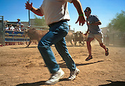 05 MAY 2002 - SCOTTSDALE, ARIZONA, USA: People participating in the 1st Annual Running of the Bulls at Rawhide in Scottsdale, Arizona, run the course with bulls in pursuit. The event was a part of a Cinco de Mayo celebration. About 400  people paid up to $80 each to run with the bulls. The event was fashioned after the running of the bulls in Pamplona, Spain. .PHOTO BY JACK KURTZ