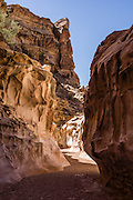 Explore the beautiful sandstone slot of Crack Canyon on federal BLM land in San Rafael Swell, near Goblin Valley State Park, Utah, USA. The Bureau of Land Management (BLM) is an agency within the United States Department of the Interior that administers American public lands.