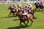 York Races Dante Festival Day Two 160519