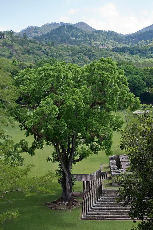 Copan Ruins, Honduras. June 2009.  (Photo/William Byrne Drumm)