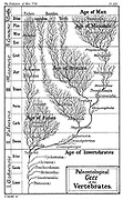 Paleontological tree of vertebrates. From Ernst Haeckel''The Evolution of Man', fifth edition, London, 1910
