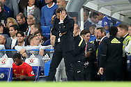 Antonio Conte, the Chelsea manager looks holding his head . Premier league match, Chelsea v Liverpool at Stamford Bridge in London on Friday 16th September 2016.<br /> pic by John Patrick Fletcher, Andrew Orchard sports photography.
