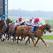 Lingfield 24th March