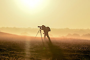 © Licensed to London News Pictures. 02/11/2016. Richmond, UK. A photographer takes a picture in the sunrise. Deer in the frost in Richmond Park London today 2nd November 2016. much of the country experienced a frost overnight. Photo credit : Stephen Simpson/LNP