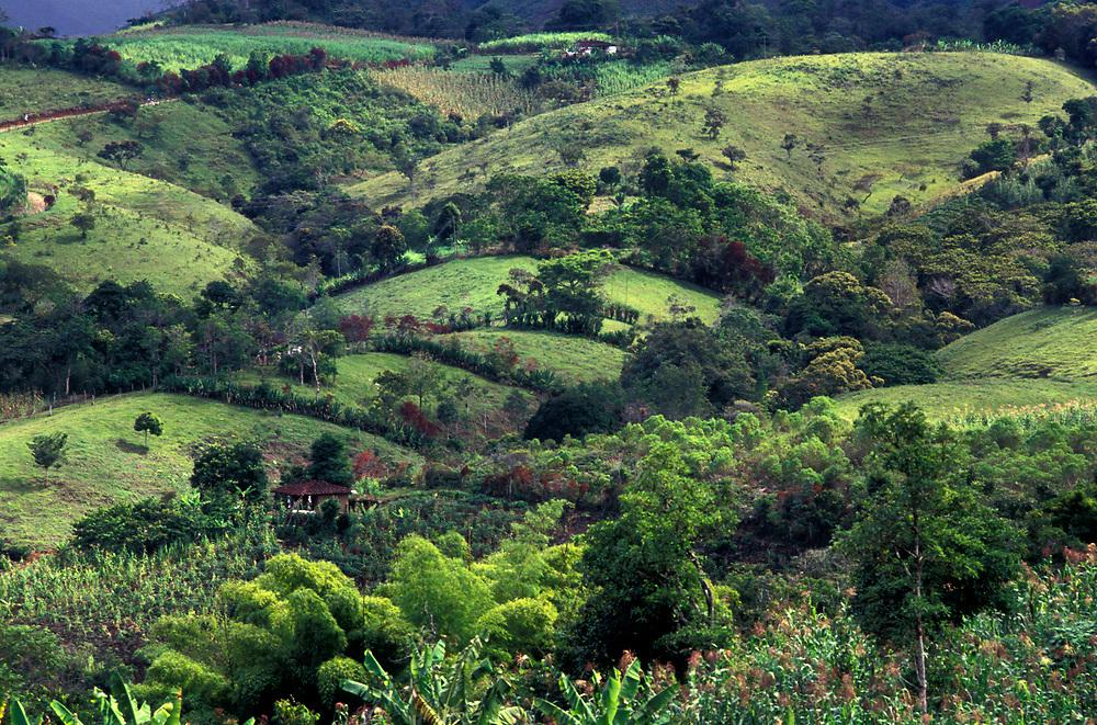 Landscape near San Augustin, Huila.