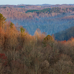 Dawn in the hills of the Hughes River Wildlife Management Area near Walker, West Virginia. Spring.
